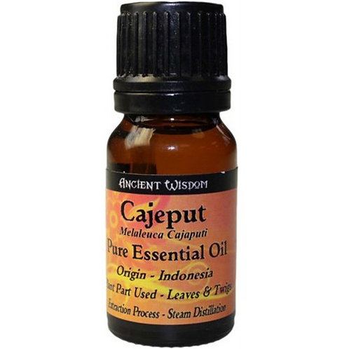 CAJEPUT-ÖL - 100 % NATUR! 10 ml ätherisches Öl