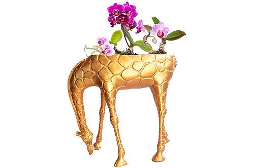 Origineller Blumenübertopf! Giraffe aus Kunstharz – Höhe ca. 41 cm