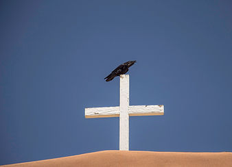 Raven 002.jpg