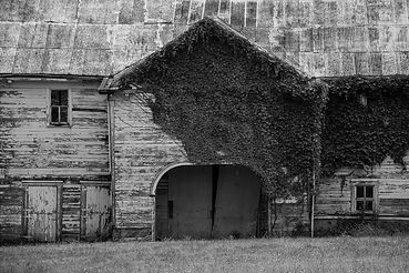 Collin County Barn.jpg