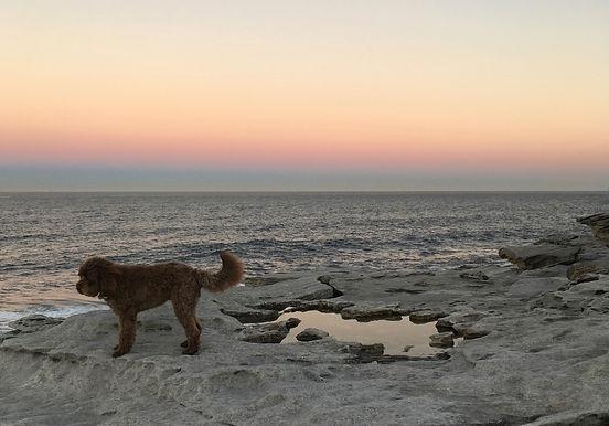 Ani clifftop sunset colour.jpg