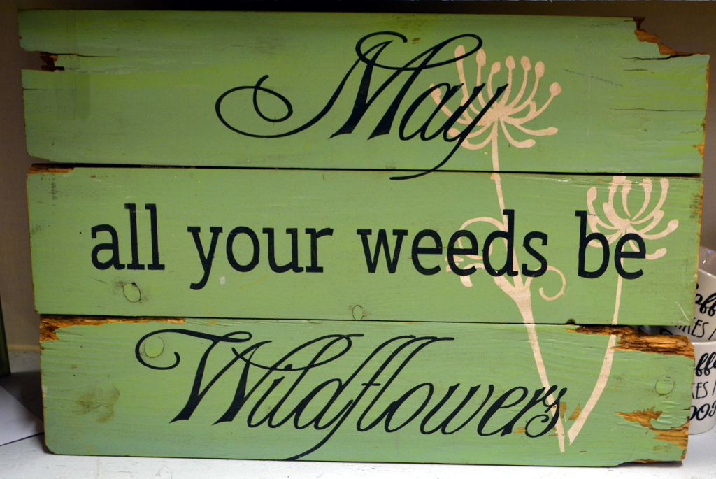 May all your weeds be Wildflowers