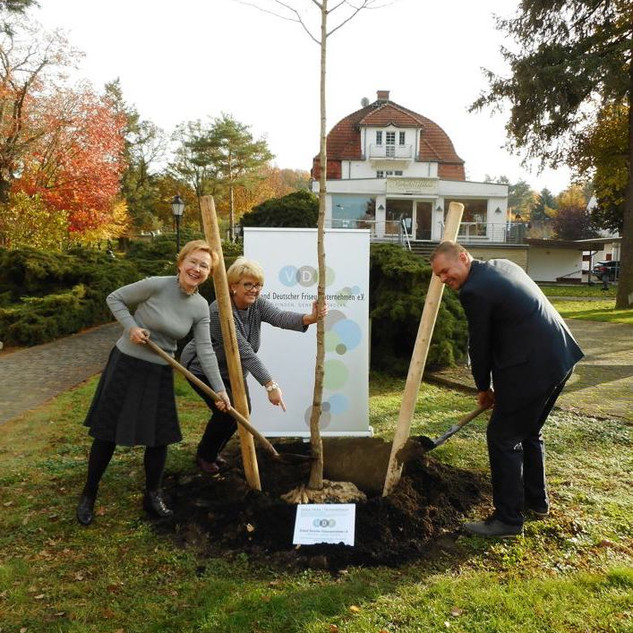 Der VDF e.V. pflanzt einen Baum