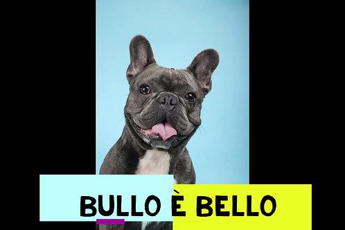 """PROMO PACCHETTO  """"BULLO E' BELLO"""""""