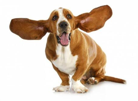 Tappati le orecchie, forte, più forte, sempre più forte… lo senti quanto ti voglio bene?