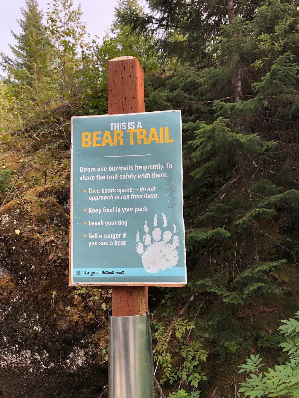 Bear trail signage