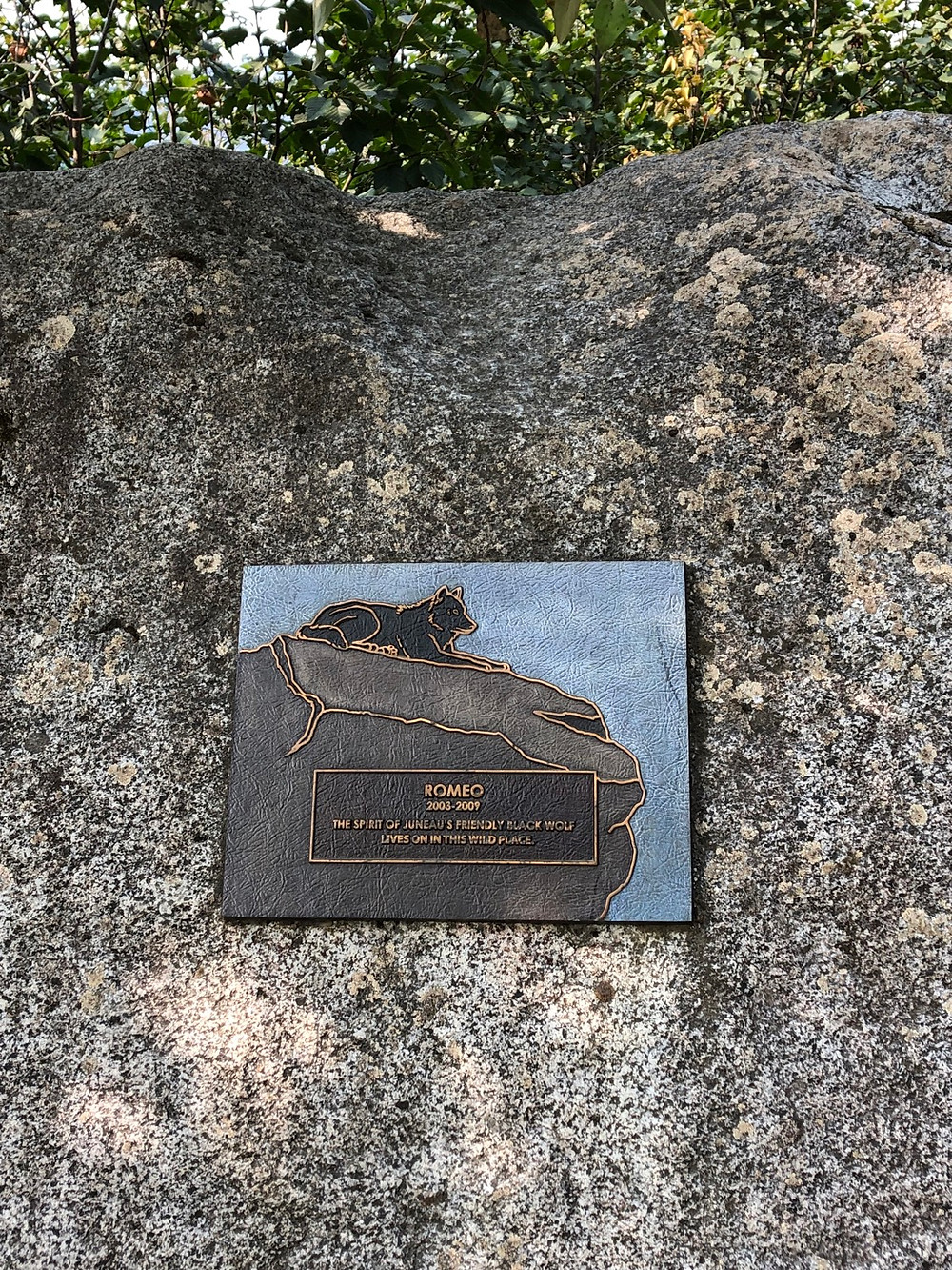Plaque sign on a rock