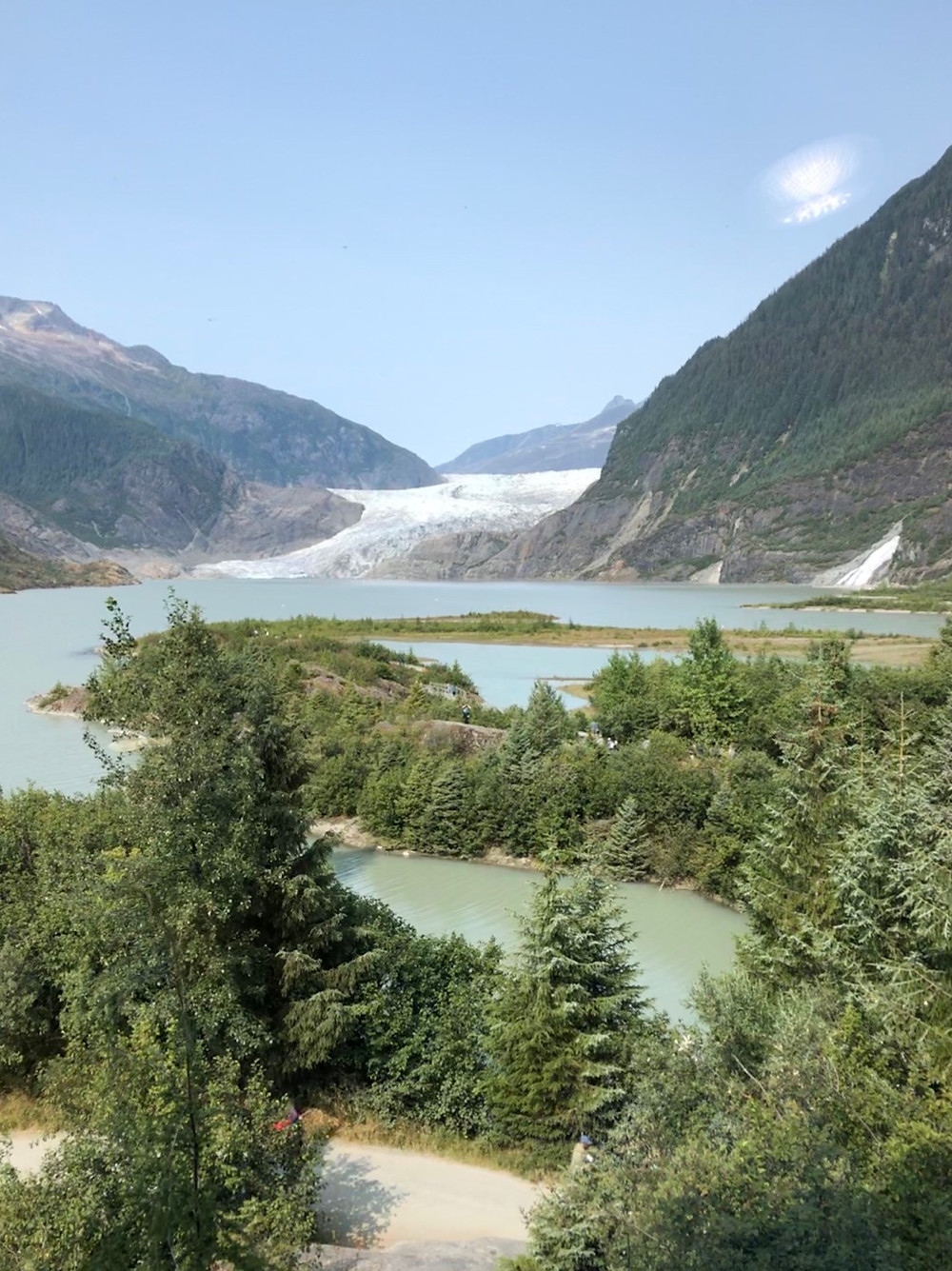 panoramic view of Mendenhall Glacier with trees in the foreground