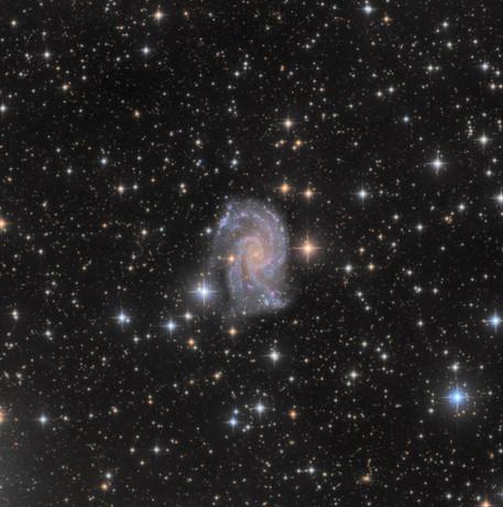 NGC 2835