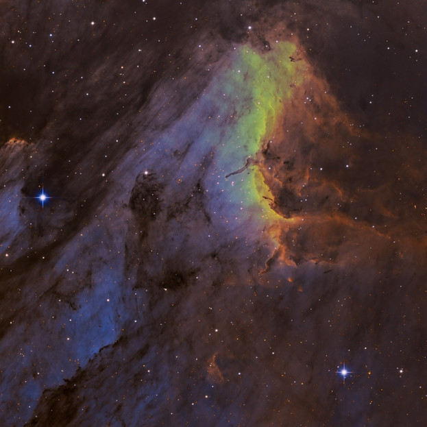 IC5070 - The Pelican Nebula