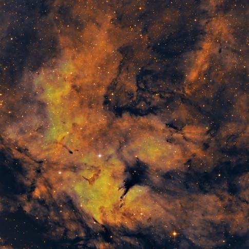 IC 1318 - The Butterfly Nebula