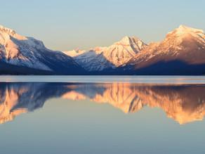 Scanning the Horizon: 4-8 Jan
