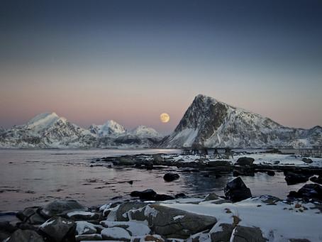 Scanning the Horizon: 22-26 Feb