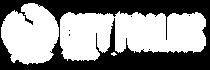 Alt Web Logo.png