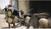 Read Of the Week: Sustainable Energy for All: The Gender Dimensions
