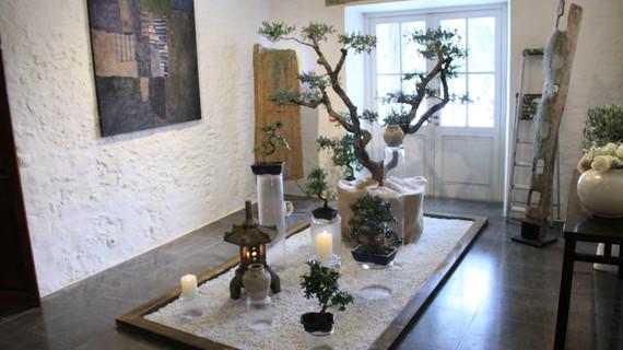 Un jardin zen par J.E.V.