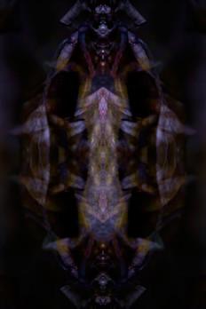 The Mammoths Headdress