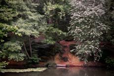 Pondside