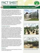 NCPN Citrus Alambama Factsheet