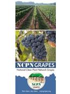 NCPN-Grapes Brochure