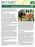 Citrus HLB Factsheet