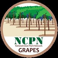 NCPN_Grapes1.png