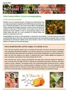 Citrus Newsletter