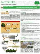CCPP Factsheet