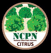 NCPN_Citrus1.png