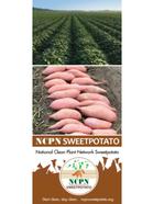 NCPN-SP Brochure