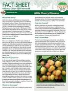 Little Cherry Disease Factsheet