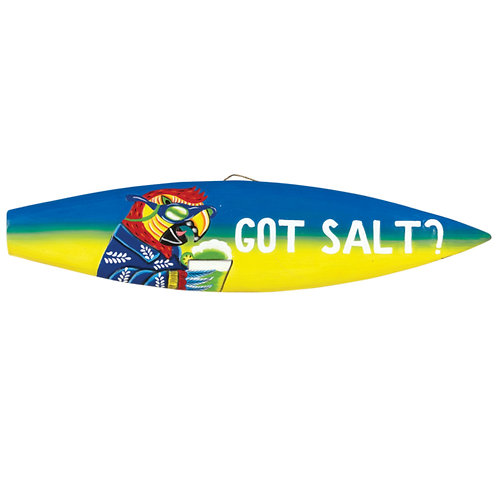 Got Salt? Wall Decor