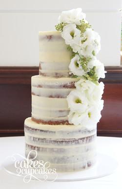 cakes2cupcakes-seminaked.jpg