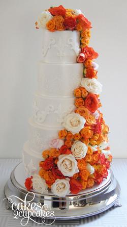 cakes2cupcakes-orange.jpg