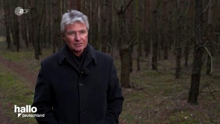 Kommissar Sommer und der Mord im Wald