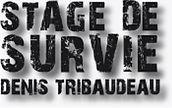Logo denis tribaudeau.jpg