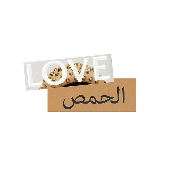 i-love-hummus2.jpg