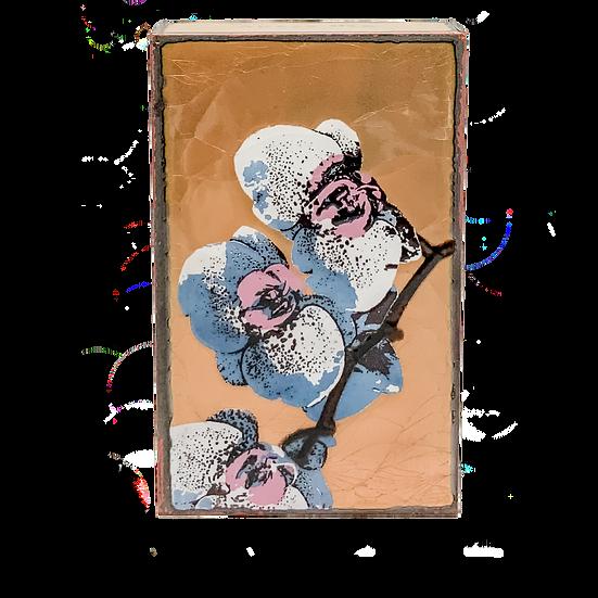 260: Bloom