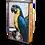 Thumbnail: 218 - Parrot