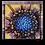 Thumbnail: Flower 4
