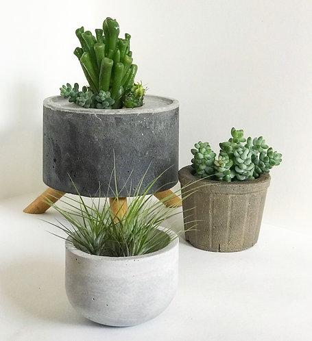 Trio de vasos de cimento com suculentas e airplant