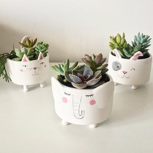Vaso de porcelana divertido