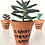 Thumbnail: 20 unid. Mini Suculentas + Vaso Terracota com nomes em Caligrafia