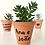 Thumbnail: 10 unid. Mini Suculentas + Vaso Terracota  em Caligrafia