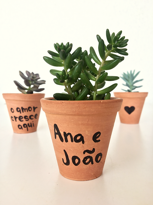 20 unid. Mini Suculentas + Vaso Terracota com nomes em Caligrafia