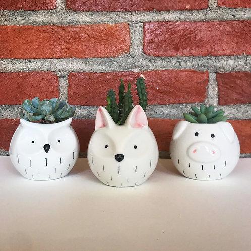 Mini vasos de porcelana divertidos