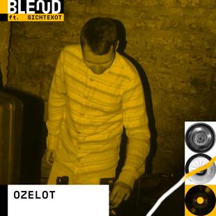 Sex Drugs & Switch Kickflips - diese Combo bestehend aus IVE (Rap), Negoucé (Rap), Yowlandi (Gesang), Henace (Beats), Popadiclo (Beats), Ozelot (Beats), Kaktusman (Rap) & Bill Adlib (Beats) ist straight up Hip Hop aus dem Mainzer Untergrund. Der Name ist Programm heisst: Es wird wild, also Helm und Knieschoner mitbringen! Wir freuen uns auf @sexdrugsswitchkickflips !
