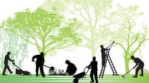 Création d'un espace vert