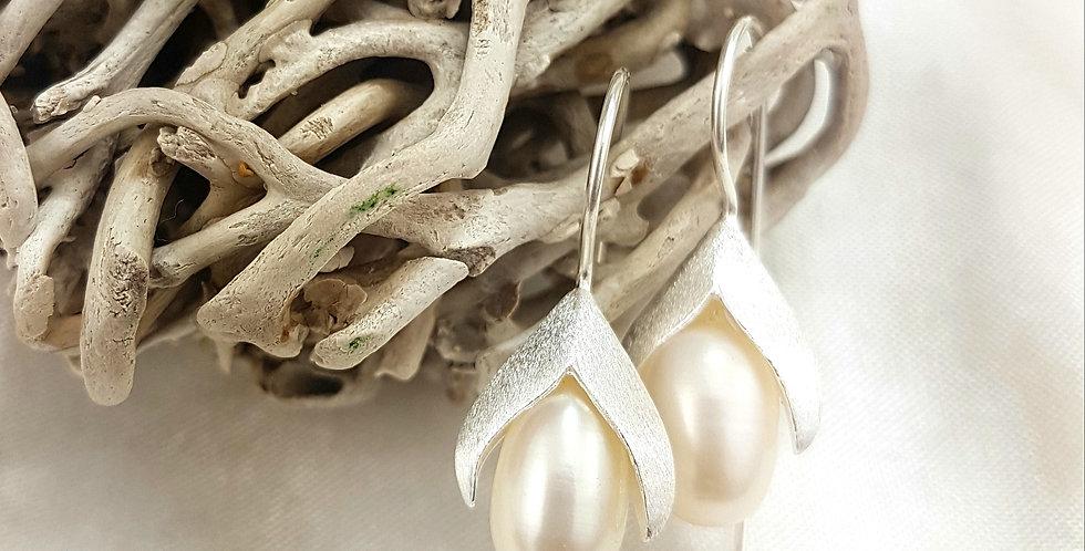 Pearl Pod earrings