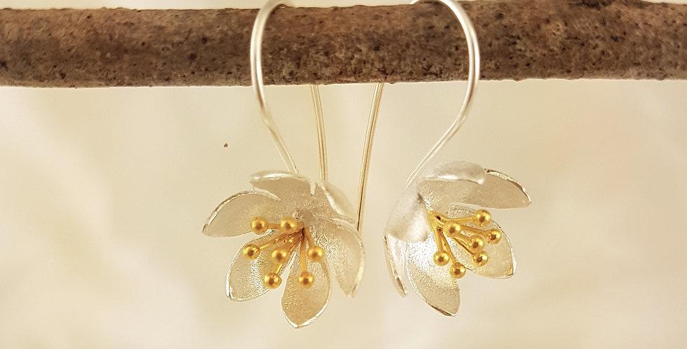 gold & sterling silver earrings